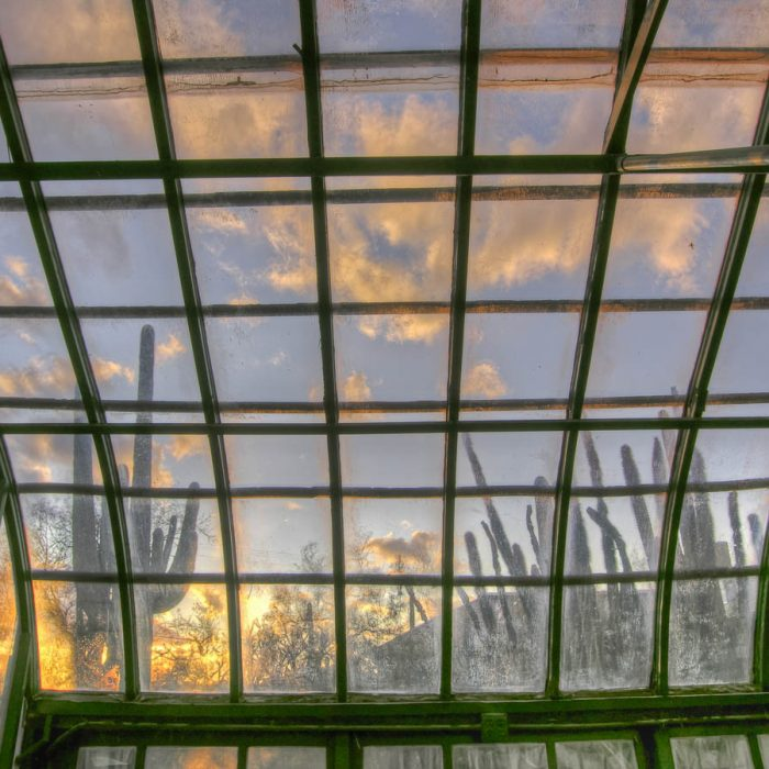 Old Greenhouse 2
