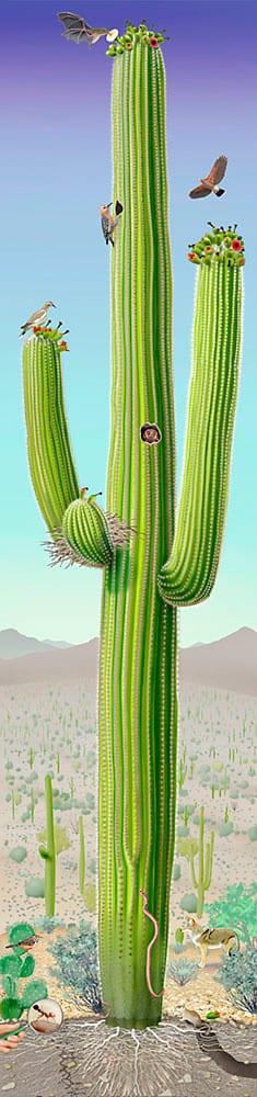 A giant saguaro poster