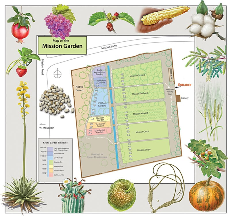 Vistors map of the Mission Garden