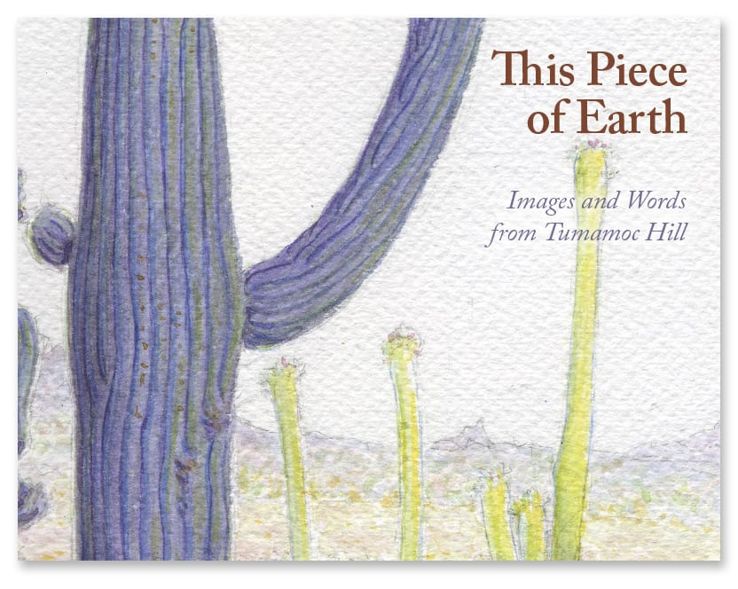 This Piece of Earth-cover design