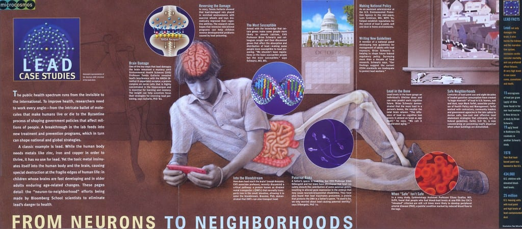 neurons to neighborhoods page layout