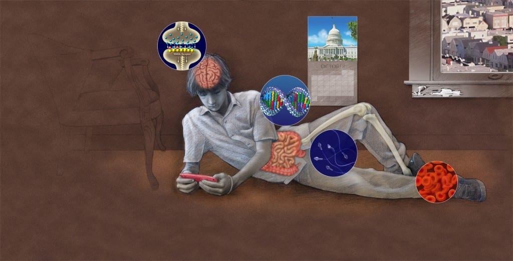 neurons to neighborhoods illustration