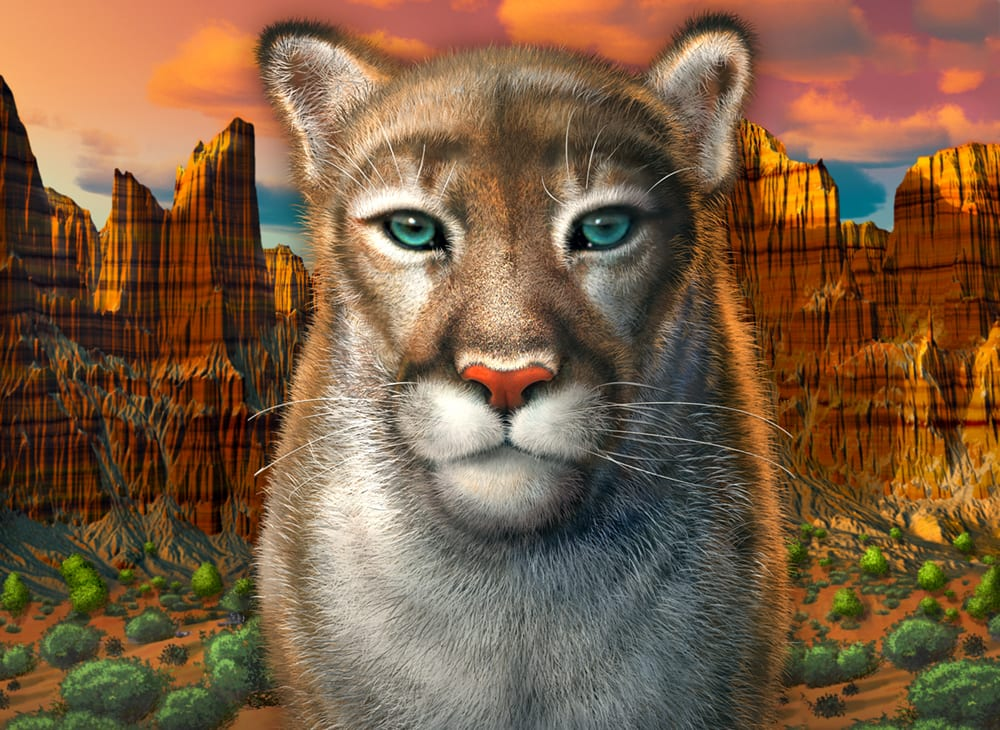 illustration of mountain lion with canyon country background