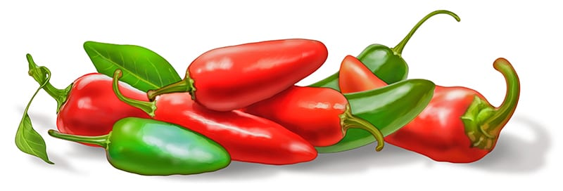 Illustration of sweet peppers for Chicken Primal Bar package