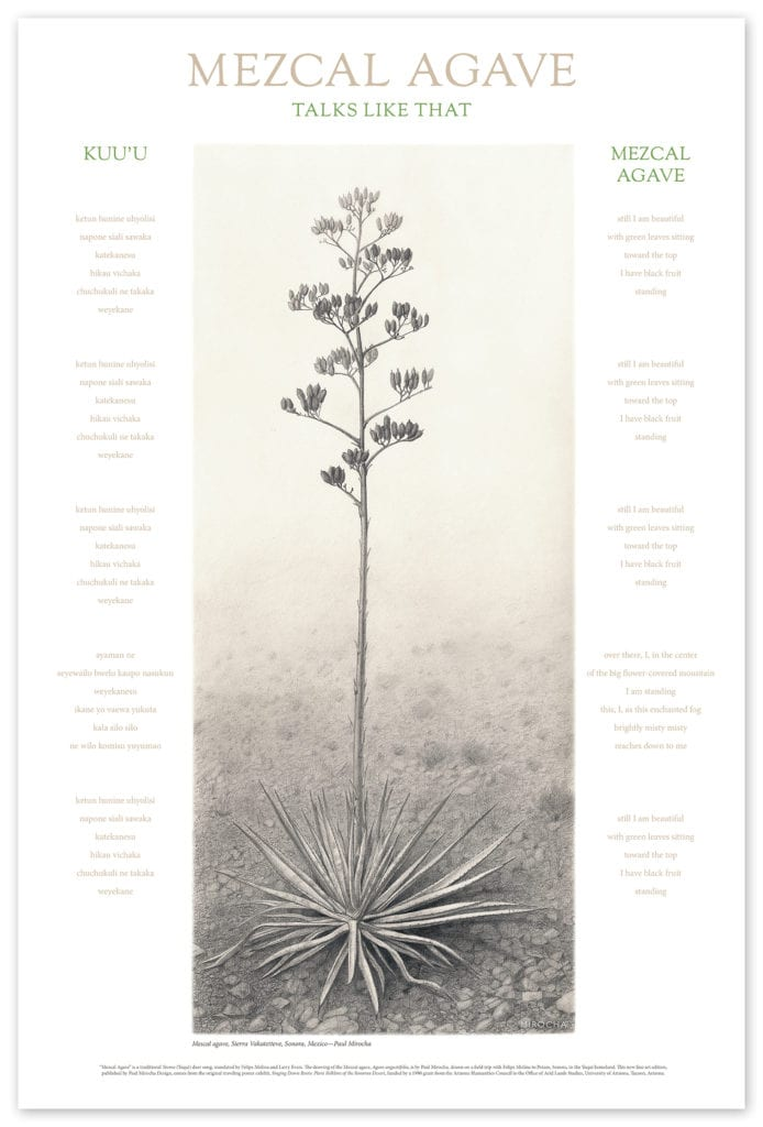 Mezcal Agave Talks Like That art print poster