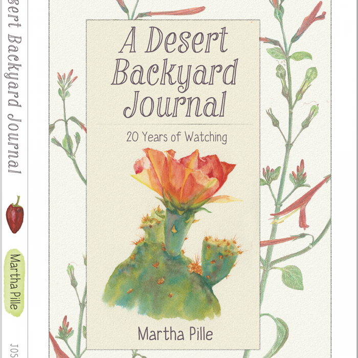 A Desert Backyard Journal